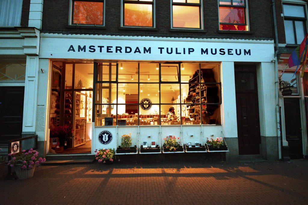 Fun Things to do in Amsterdam - Amsterdam Tulip Museum